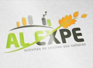 Carte De Visite AL EXPE Ralisation Dun Logo Et Cartes Pour Entreprise Dactivits Soutien Aux Cultures